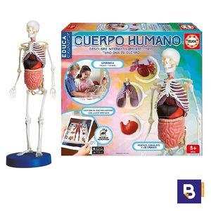 JUEGO DIDACTICO EDUCA CUERPO HUMANO (CON APP) 16560