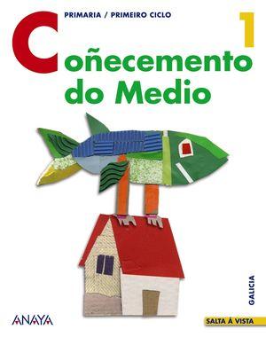 CO¥ECEMENTO DO MEDIO 1§EP 07 SALTA A VISTA