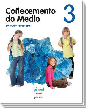 (G).(12).COÑECEMENTO MEDIO 3 .PRIM.(PIXEL)