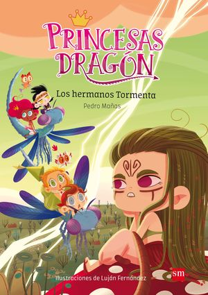 5 LOS HERMANOS TORMENTA / PRINCESAS DRAGON