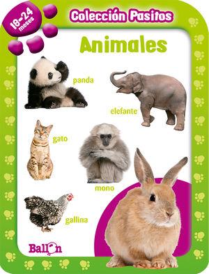 PASITOS 18-24 MESES ANIMALES